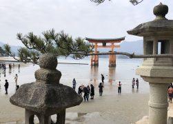 A Japan Life